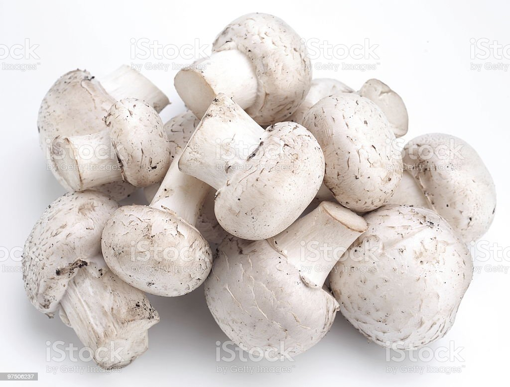 champignons on a white background royalty-free stock photo