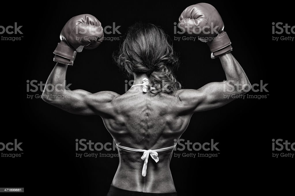 Champion - foto de acervo