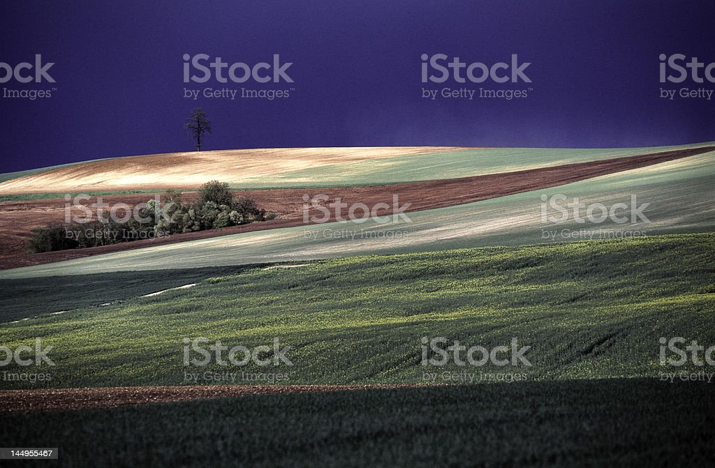 champs vallonnés avant l'orage royalty-free stock photo