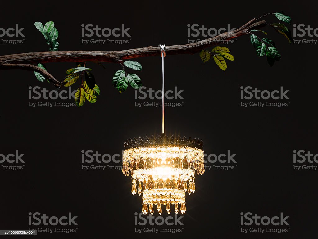 Chandelier hanging from tree branch, illuminated at night royalty-free stock photo