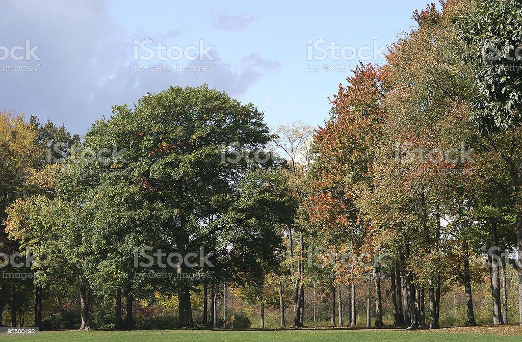 Changing Seasons royalty-free stock photo