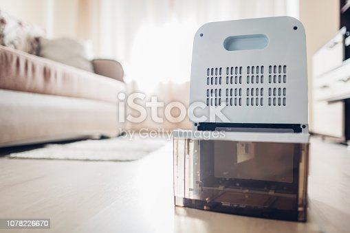 istock Changing water container of dehumidifier at home. Dampness in apartment. Modern technology 1078226670