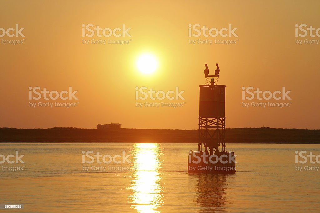 Channel marking buoy with pelicans royalty-free stock photo