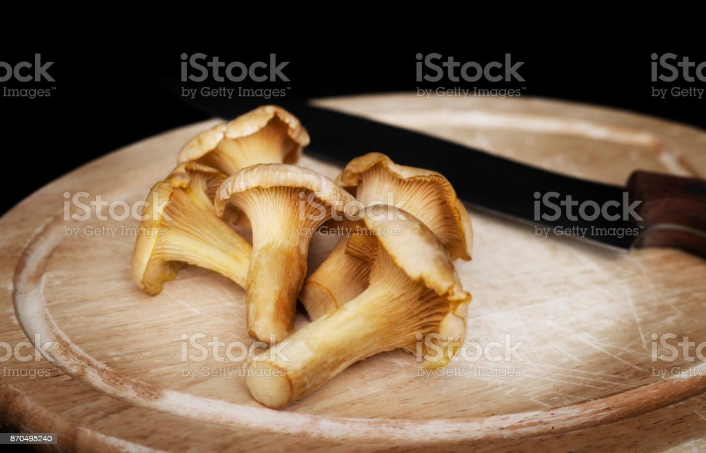 chanterelle mushrooms stock photo