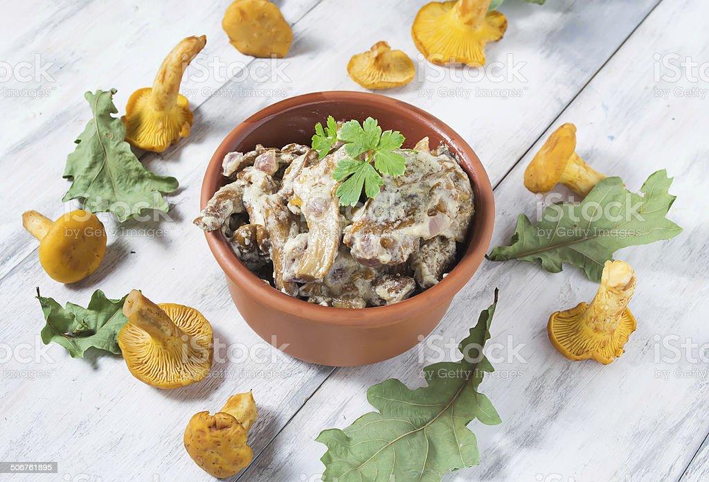 Chanterelles mushroom with cream royalty-free stock photo