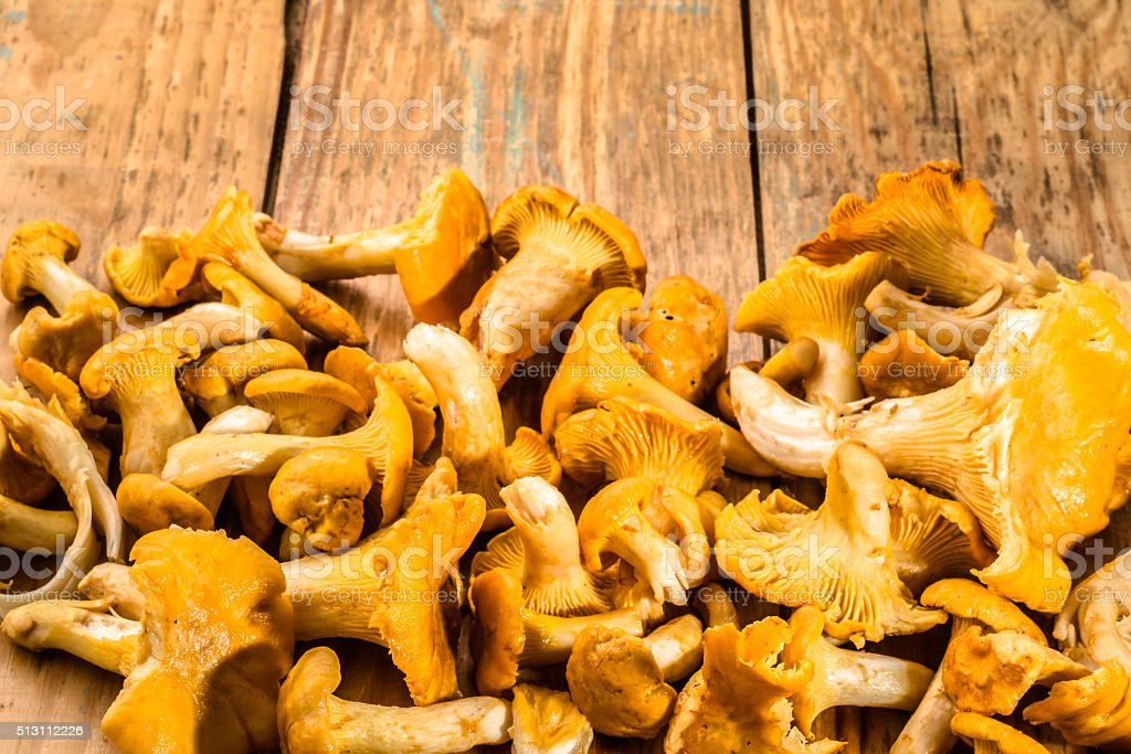 Chanterelles mushrooms isolated on a wooden table. stock photo