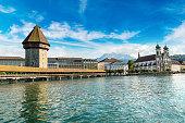 White swan at water at Geneva lake