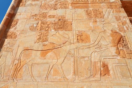 Chapel of Hathor Relief, Hatshepsut's Temple, Theban Necropolis, Luxor, Egypt