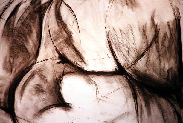 charcoal drawing - charcoal drawing stock photos and pictures