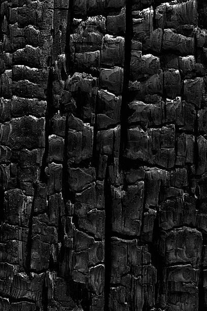Charcoal Patterns – Foto