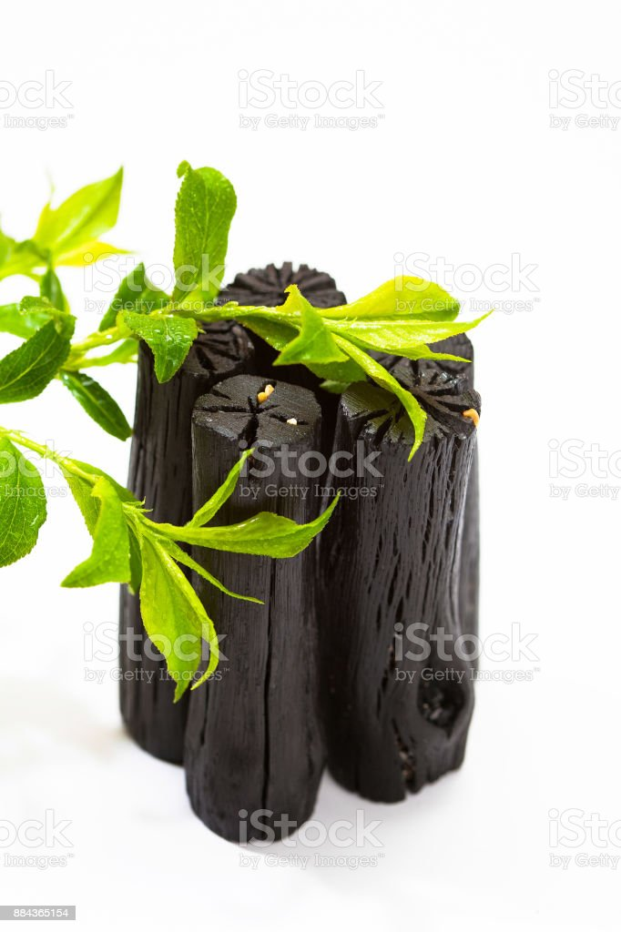 Charcoal with green leaves stock photo