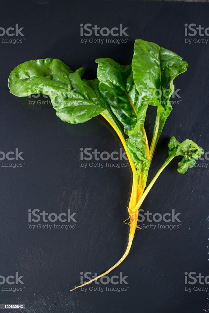 Chard plant with roots  on dark slate stock photo