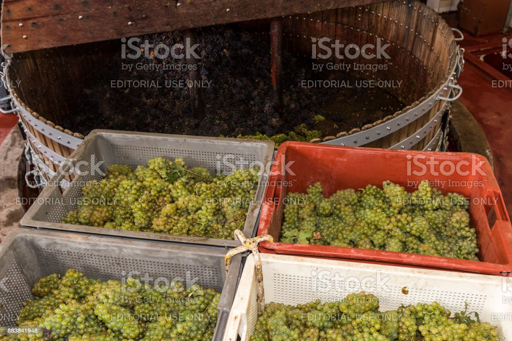 Chardonnay and Pinot Noir Wine Press stock photo
