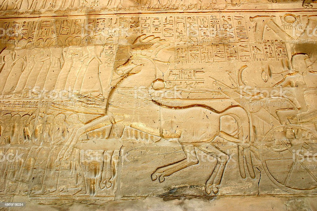 Chariot Horse at Karnak stock photo
