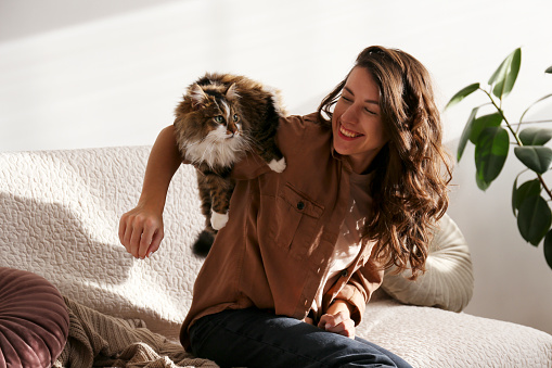 1149249445 istock photo Charismatic young woman playing with her adorable cat. 1205810846