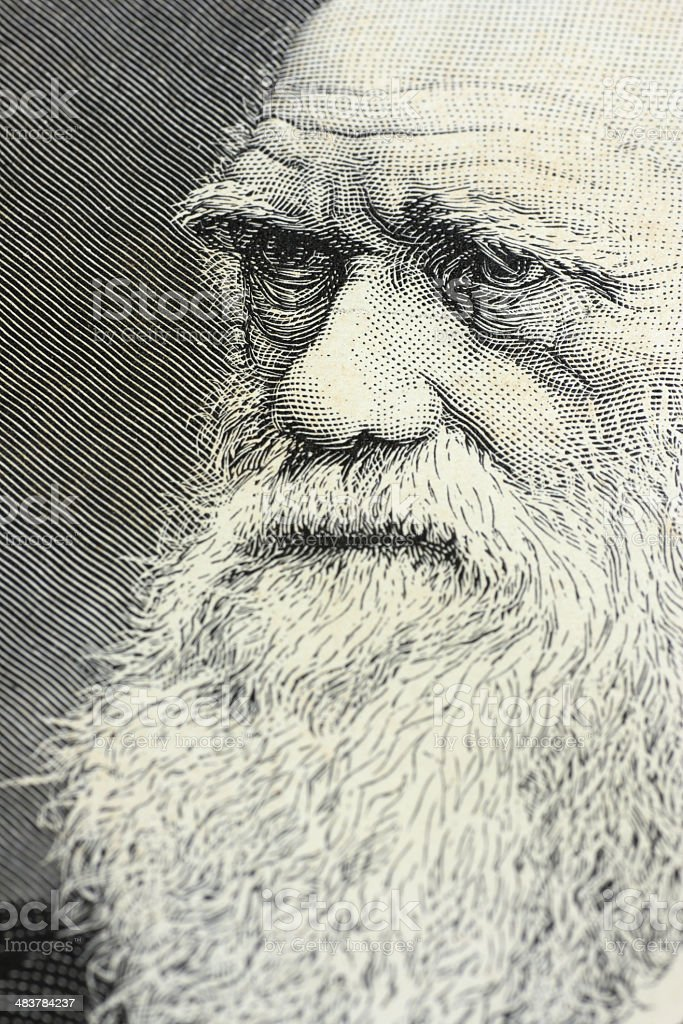 Charles Darwin portrait engraving stock photo