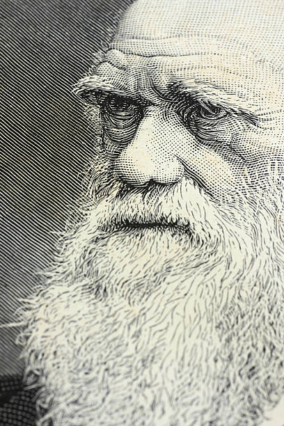 charles darwin portrait engraving - darwin stock photos and pictures