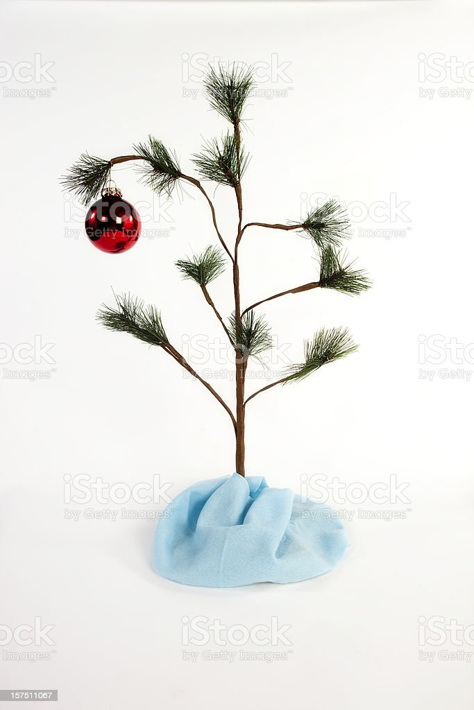 Charlie Brown Tree on white royalty-free stock photo