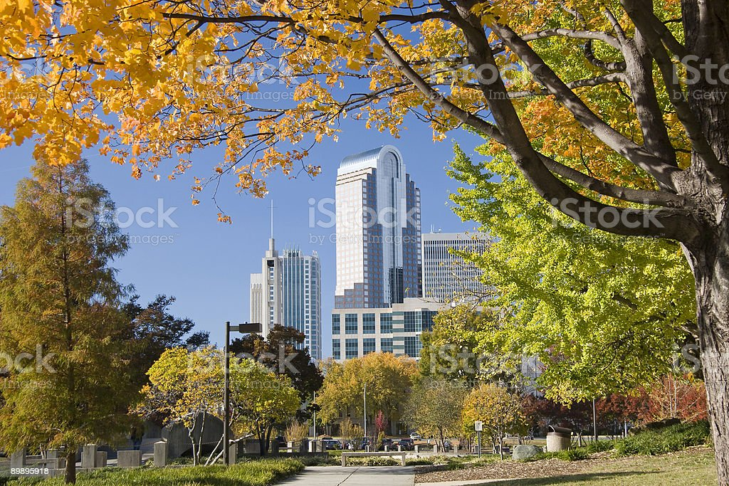 Charlotte in Autumn royalty-free stock photo