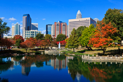 Charlotte Skyline From Marshall Park Stock Photo - Download Image Now