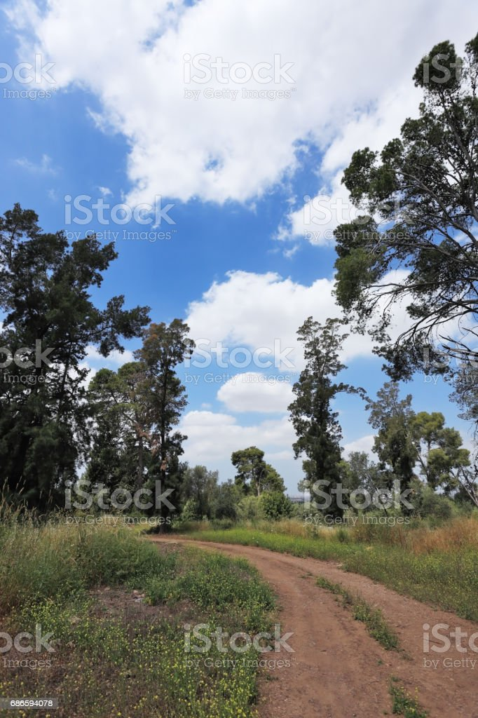 Charming country road royalty-free stock photo