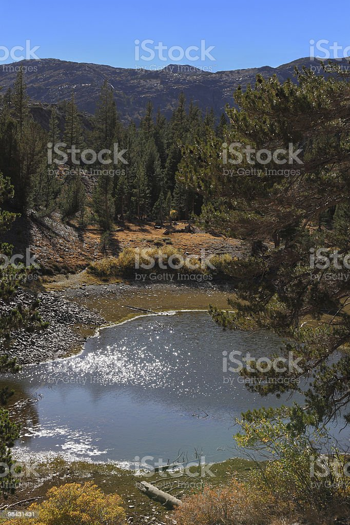 Charming lake Ellery in national park Yosemite. Warm autumn day royalty-free stock photo