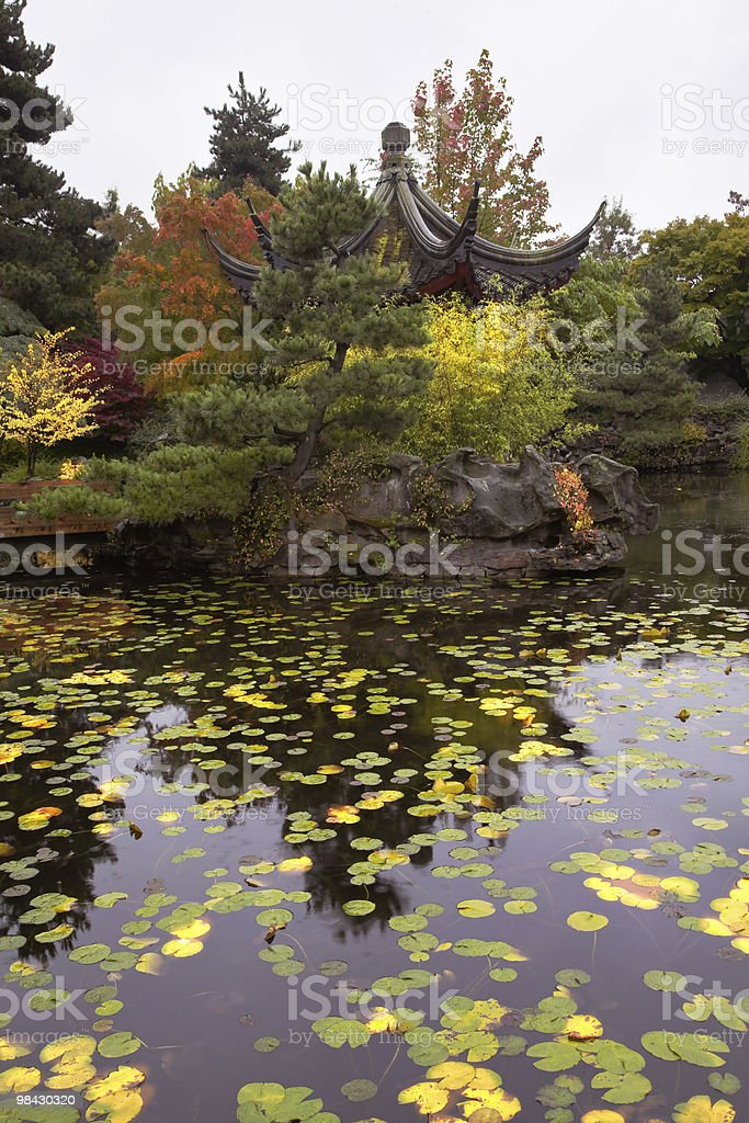 Charming pagoda on coast of a pond royalty-free stock photo