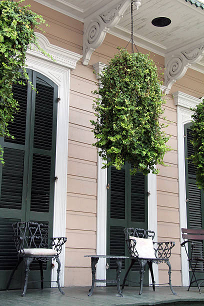 Charming Porch A southern style peaceful porch with ivy plants hanging over head. Perfect to relax on! southern charm stock pictures, royalty-free photos & images