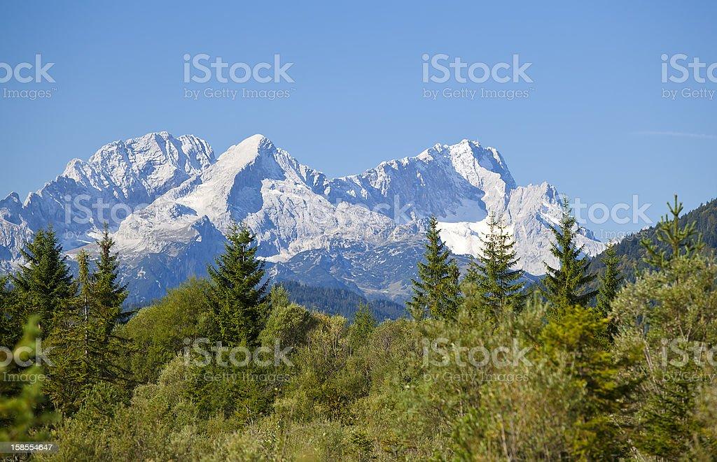 멋진 바위 및 coniferous 임산 royalty-free 스톡 사진