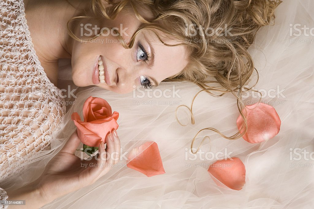 Charming rose royalty-free stock photo
