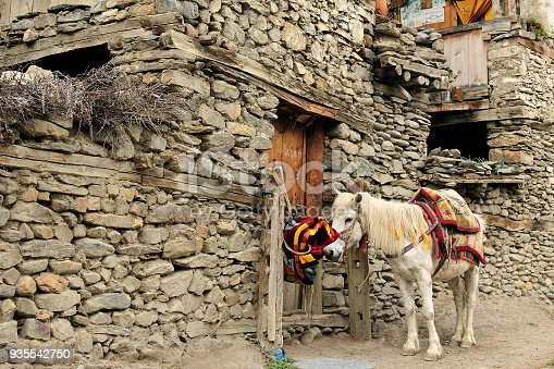 istock charming scenery of villages in himalayas 935542750