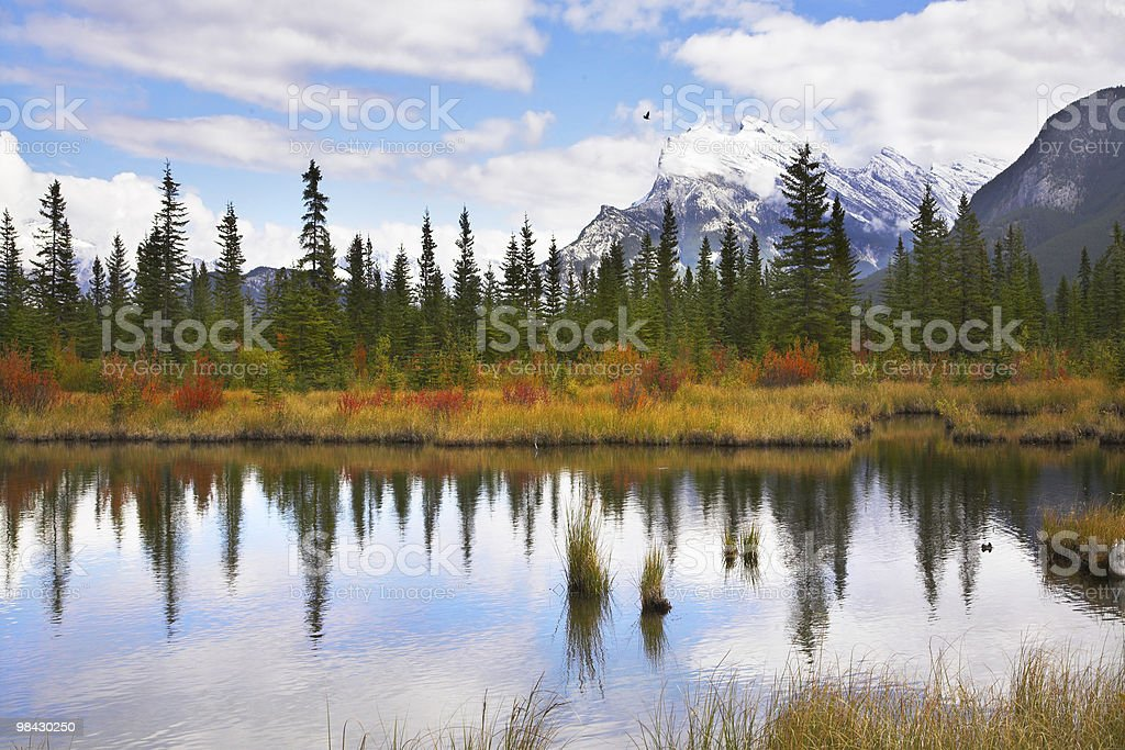 Charming small lake royalty-free stock photo