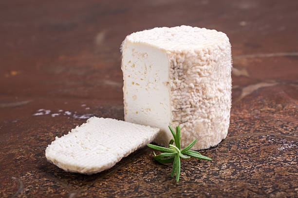 Charolais chevre french goat cheese stock photo