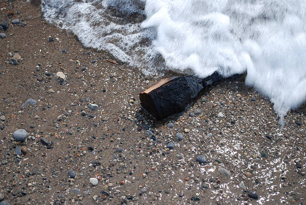 Charred piece of wood on the beach stock photo
