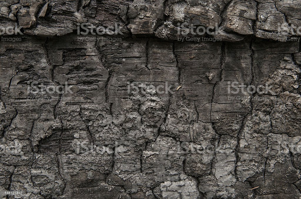 charred piece of wood with interesitng patterns and textures royalty-free stock photo
