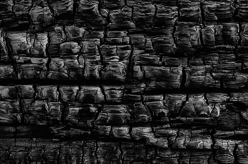 A natural abstract pattern of a wood log burned in a fire creates a black and white tetured background.
