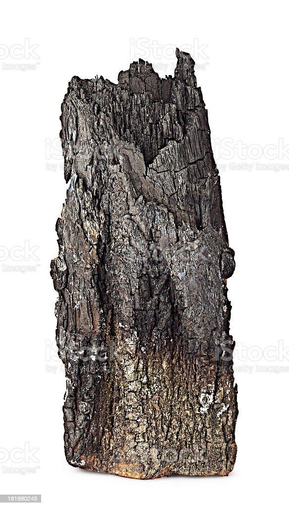 Se carbonice por completo de madera con bark - foto de stock