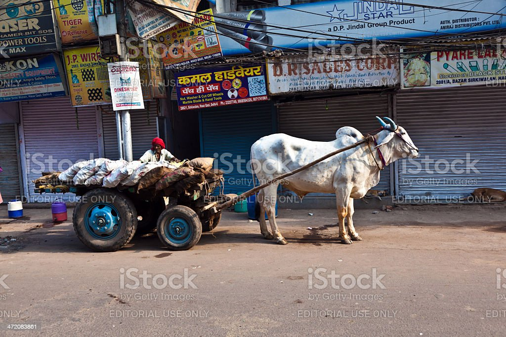 OX chart in the narrow streets of old Delhi stock photo