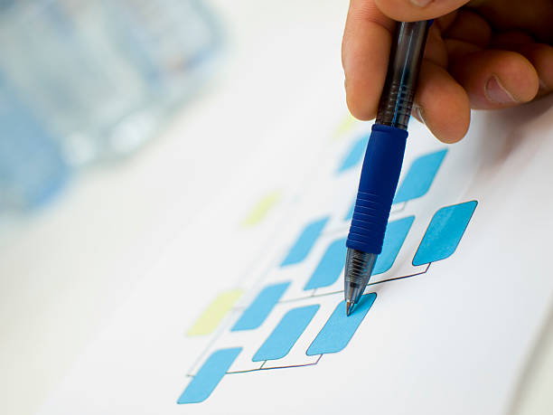 Chart  organization chart stock pictures, royalty-free photos & images
