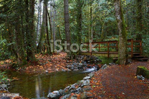 Charters creek located on Vancouver Island.