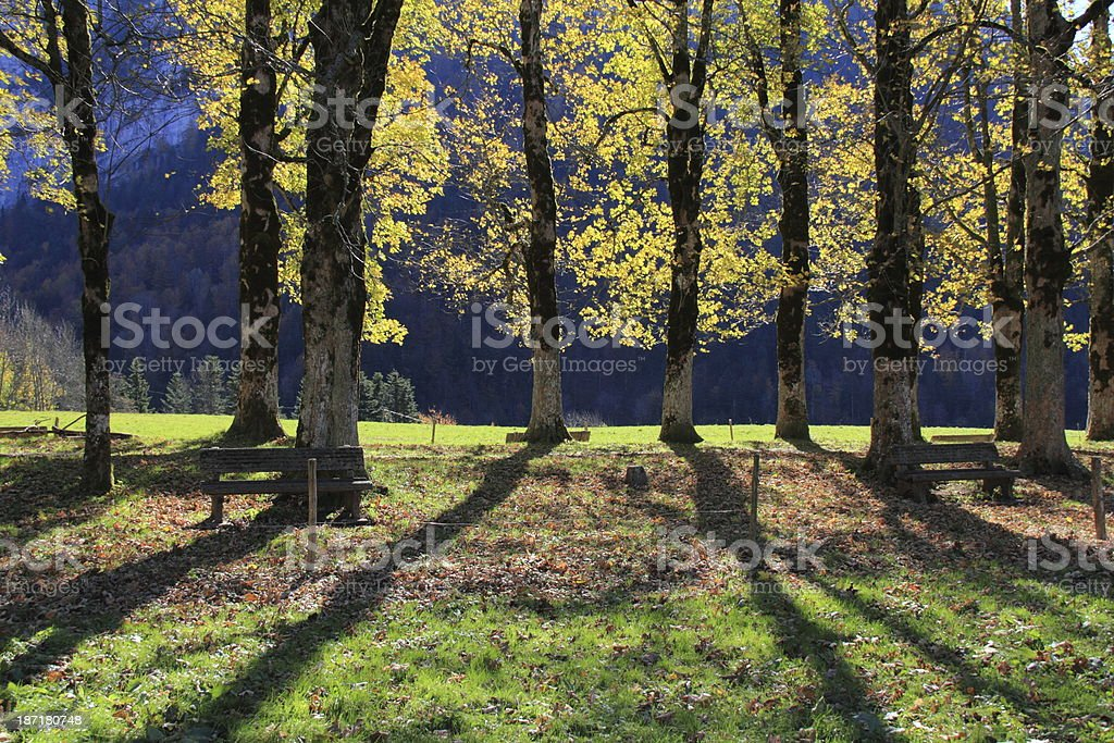 Chartreuse Autumn view royalty-free stock photo