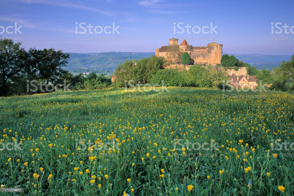 Château de Castelnau - Photo