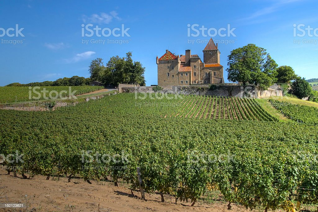 Chateau de Pierreclos, Burgundy, France Chateau de Pierreclos is one of the most imposing castles in the vineyards from Burgundy, France. It is located in the south of the region, close to the city of Macon. Most of the castle features are dating  from the 12 century. Agriculture Stock Photo