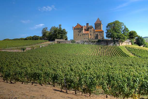 Château de Pierreclos, Bourgogne, France - Photo