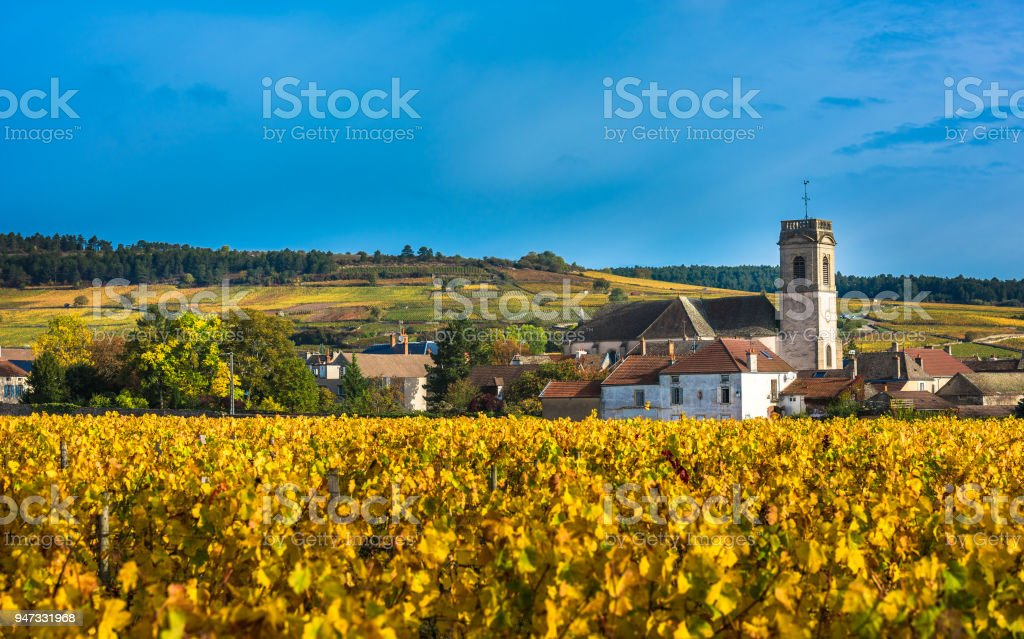 Chateau with vineyards in the autumn season, Burgundy, France stock photo