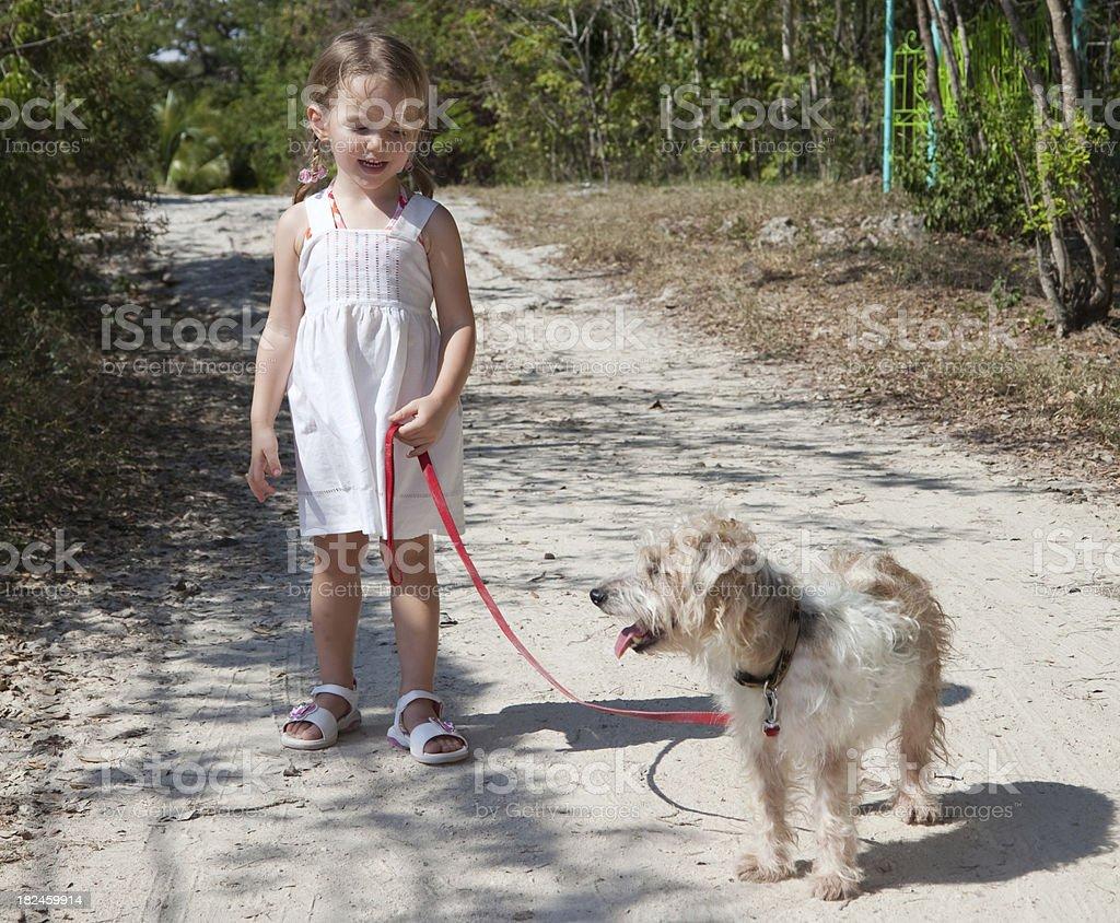Charlar con perros foto de stock libre de derechos