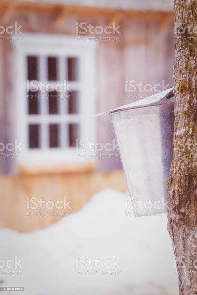 Chaudière d'eau d'érable stock photo