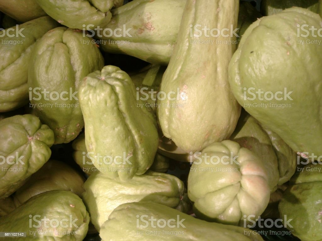 Chayote, vegetable pear, pear squash, alligator-pear, mango squash, custard marrow, mountain bladder-fern, custard marrow, madeira marrow, chou chou or cho cho stock photo