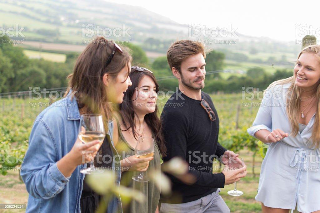 Confira este vinho foto royalty-free