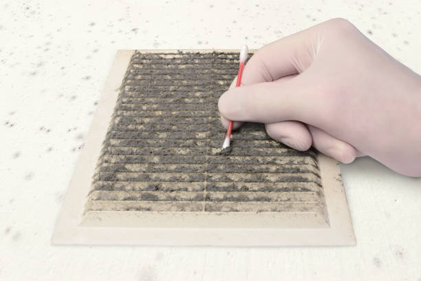 check ventilation pollution person gloved check ventilation in the dirt with a cotton swab, cleaning dusty ventilation grilles, on a moldy white wall blowing stock pictures, royalty-free photos & images